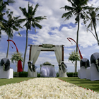 bali wedding beach agency